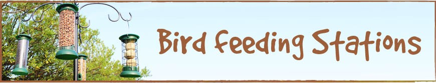 Bird Feeding Stations