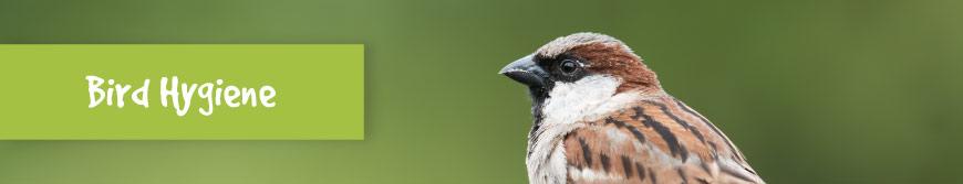 Bird Hygiene