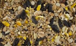 Autumn Seed Mixes