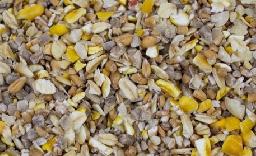 Summer Seed Mixes