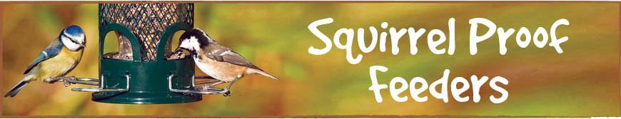 Squirrel Proof Feeders