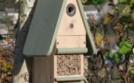 Other Wildlife Food & Houses