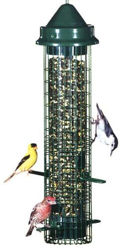 Squirrel Buster Classic Bird Seed Feeder