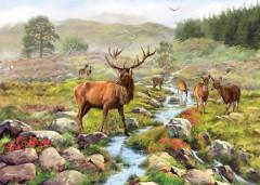 National ParkJigsaw 1000 Pieces