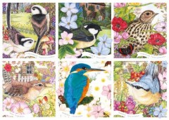 Garden Birds Jigsaw 1000 Pieces