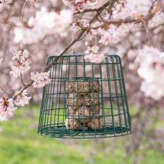 Squirrel Resistant Fat Ball/ Suet Cake Feeder with Guardian