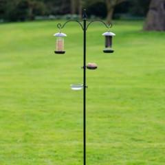 Everyday Bird Feeding Station
