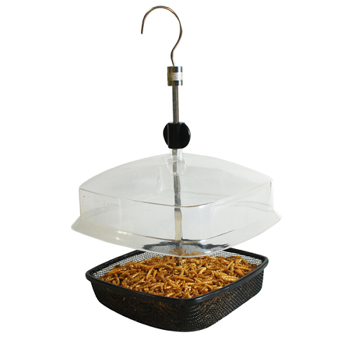 Hanging Mealworm Bird Feeder With Canopy