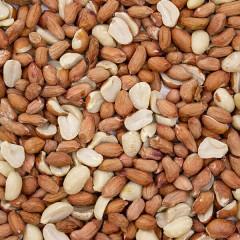 Wild Bird Peanuts - Aflatoxin Tested