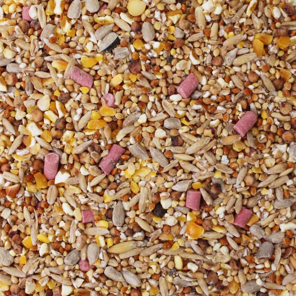 1.6kg Honeyfields Summer Wild Bird Food