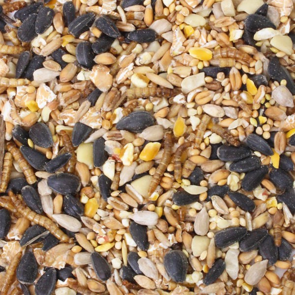 Honeyfields Insect Mealworm Feast