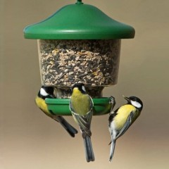 My Favourites Clinger Feeder