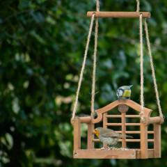 Wildlife World Luytens Swing Seat Feeder