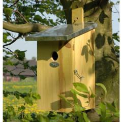 Fallen Fruits Observation Nest Box