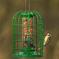 GardenBird Exclusive Premium Peanut Feeder with Guardian - Medium