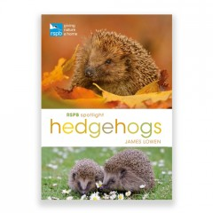 RSPB Spotlight on Hedgehogs Book