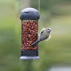 Henry Bell Essentials Wild Bird Peanut Feeder