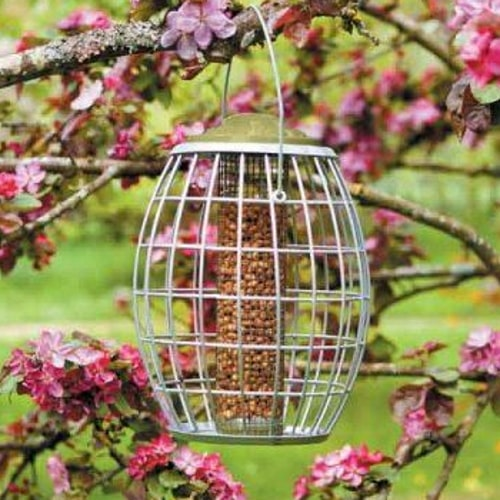 Chapelwood Ultra Squirrel Proof Nut Feeder