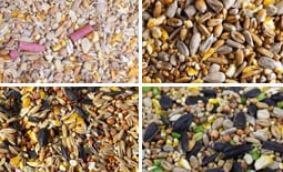 view all seed mixes